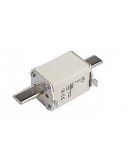 Wkładka bezpiecznikowa NH1 100A gF 500V WT-1 004139117