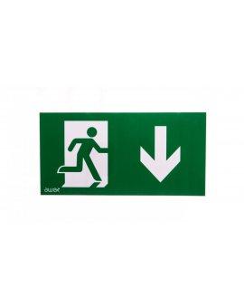 Piktogram 125x250 PS27 człowiek w drzwiach strzałka dół logo awex (ISO7010)