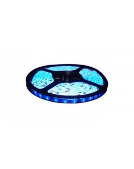 Taśma 300 led smd 2835 ip20 standard niebieska LUX02310 /5m/