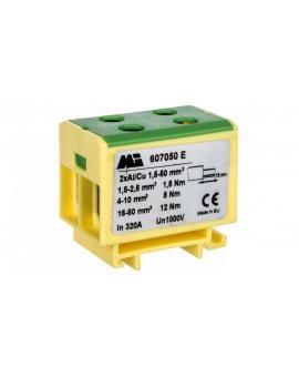 Złączka szynowa 2-torowa 1, 5-50mm2 żółto-zielona EURO multiOTL 50 2xAl/Cu 607050 E
