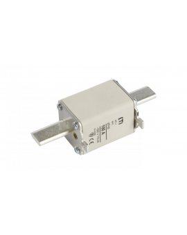 Wkładka bezpiecznikowa NH1 100A gG 500V WT-1 004113245