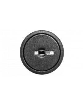 Łącznik pokrętny z kluczykiem 2 położenia stabilne z ramką /klucz 95/ P9XSCD0A95 185400